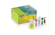 Vibrio | iQ-Check PCR kit